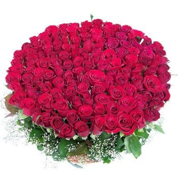 pw-1000-red-roses-bunch-to-india
